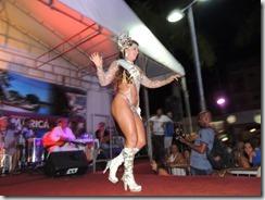 Escolha da Corte Carnavalesca 2015  de Maricá, durante Samba de Buteco. 24.01. fotos Rosely Pellegrino (166)
