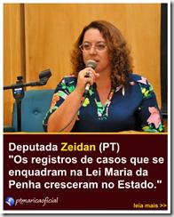 Deputada Estadual (PT) Rosangela Zeidan